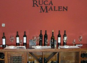 Lunch at Ruca Winery/E. Ancinas